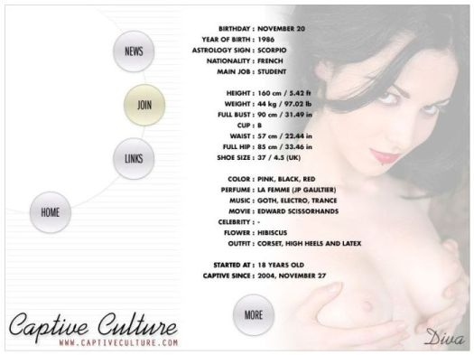 Screen Capture of the Models Page - Diva